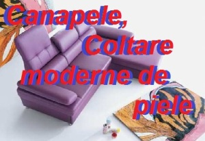 Canapele, coltare moderne de piele