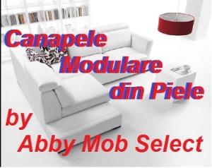 Canapele modulare din piele.