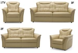 Canapele de piele living room - Davaro.
