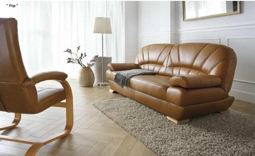 Canapele de piele pop canapele coltare din piele sau for Canapele extensibile