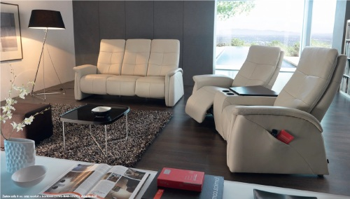 Canapele din piele living room.